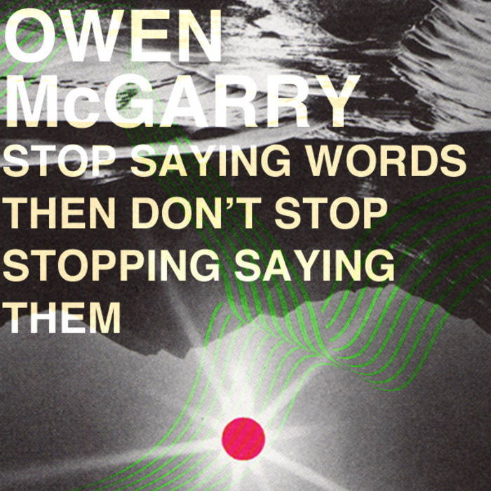 Stop Saying Words Then Don't Stop Stopping Saying Them cover art