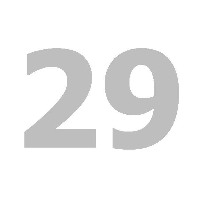 29 cover art