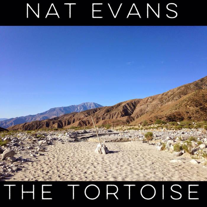 The Tortoise cover art