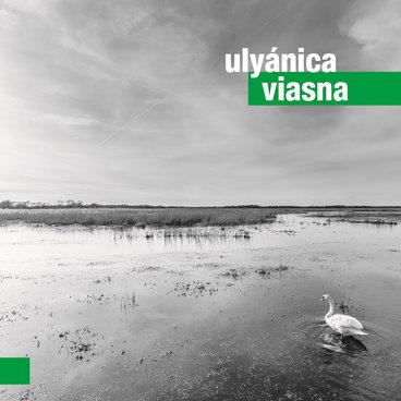 Viasna main photo