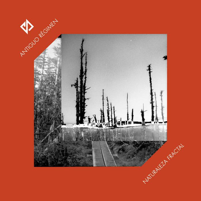 """Naturaleza Fractal"" LP cover art"
