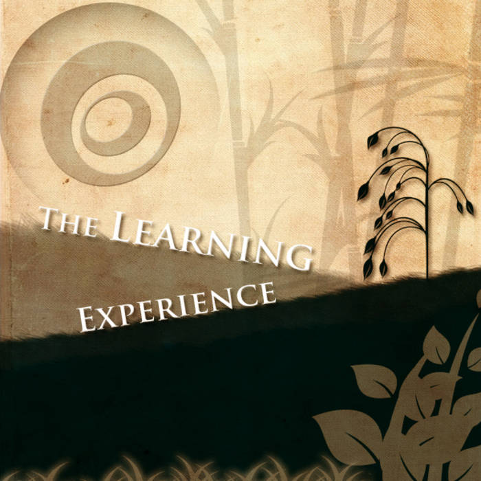 The Learning Experience cover art
