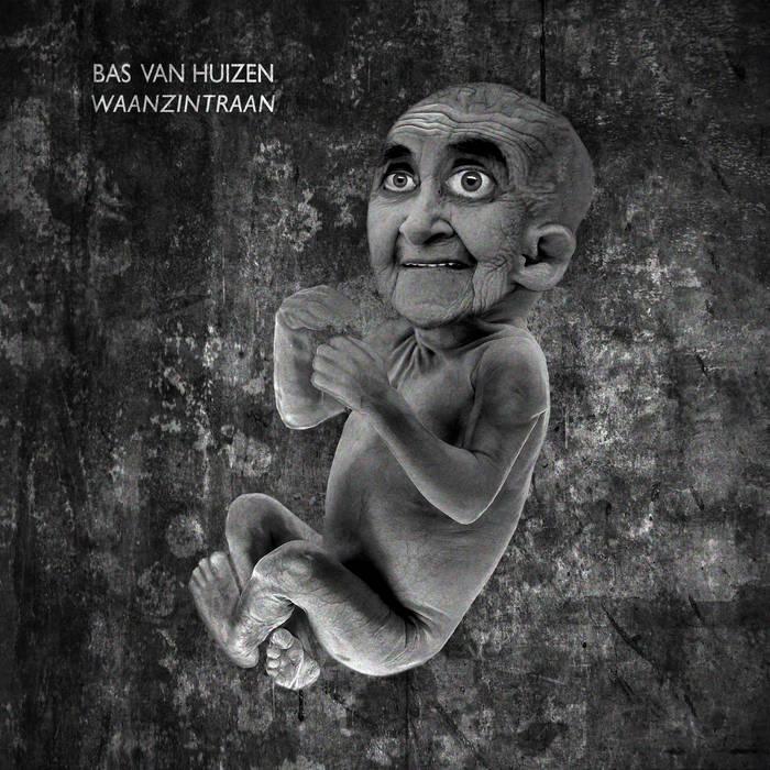 Waanzintraan cover art