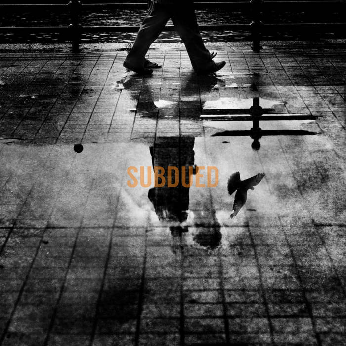 Subdued cover art