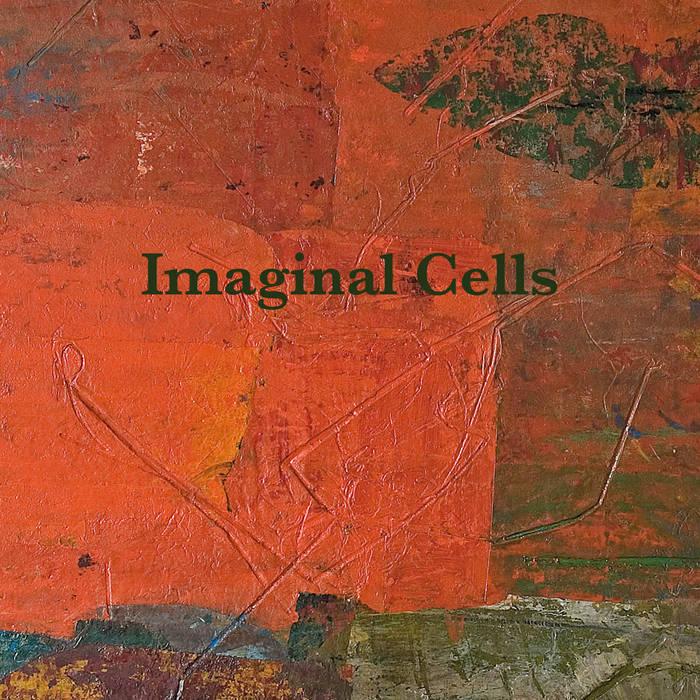 Imaginal Cells cover art