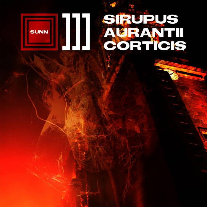 Sirupus Aurantii Corticis cover art