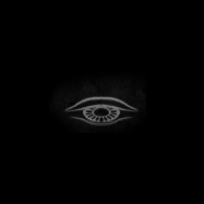 Silent Watchers - The Awakening cover art