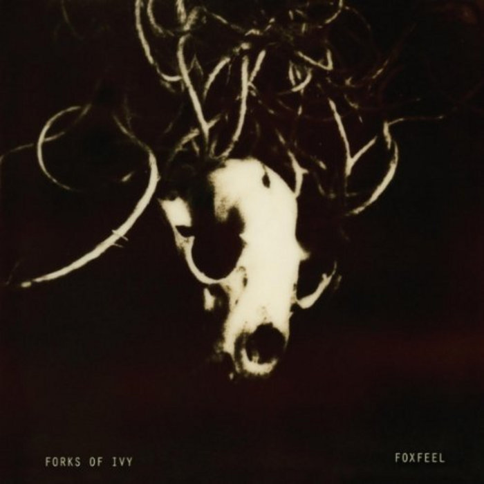 Foxfeel cover art