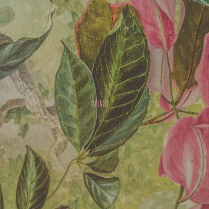 Pauhu cover art