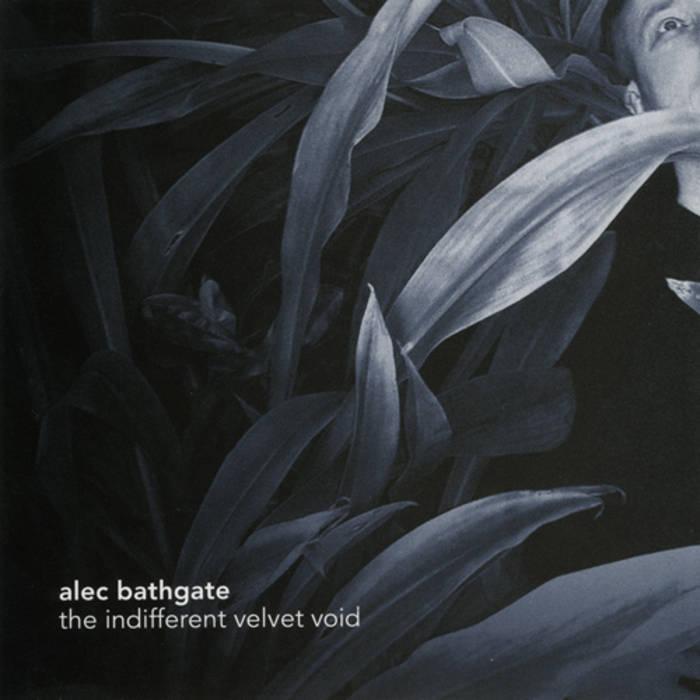 The Indifferent Velvet Void cover art