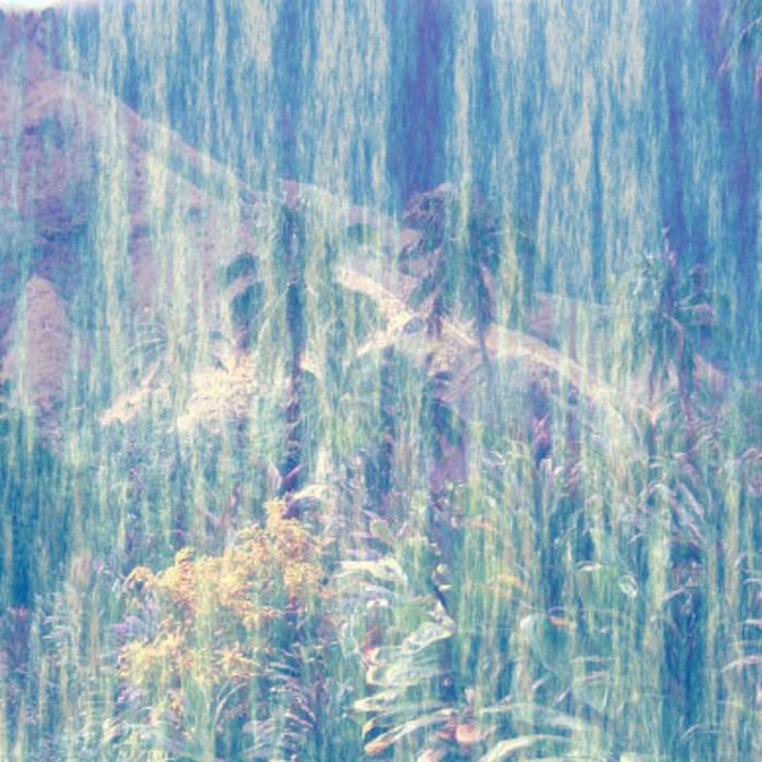paradising cover art
