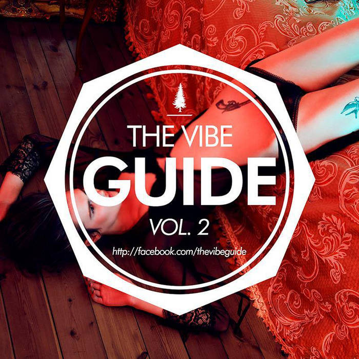 THE VIBE GUIDE Vol. 2 cover art