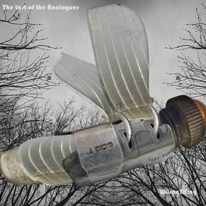 The Last Of The Analogues cover art