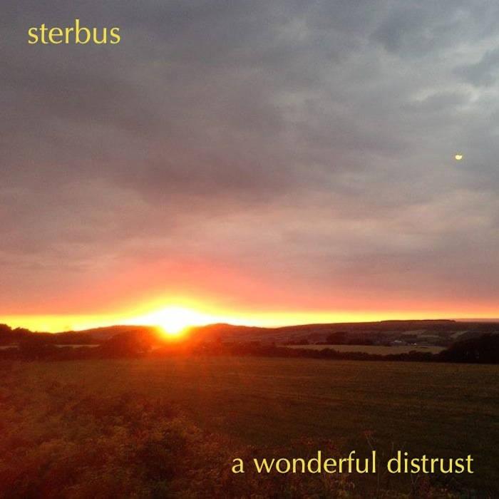 A Wonderful Distrust cover art