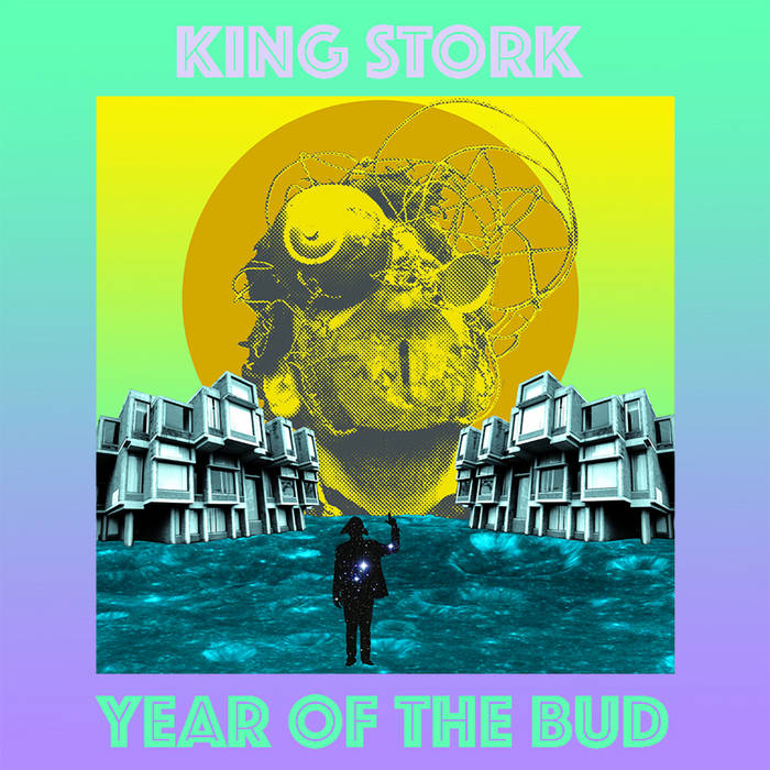 King Stork cover art