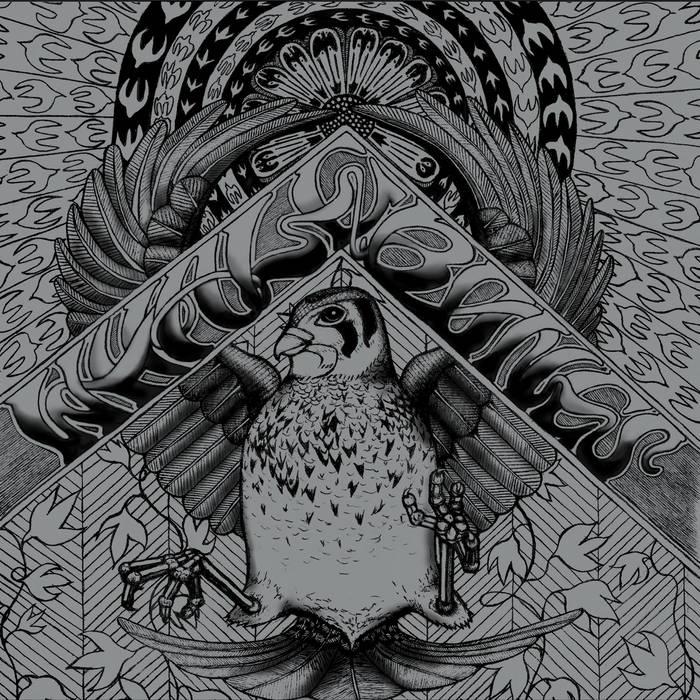 Whalebones cover art