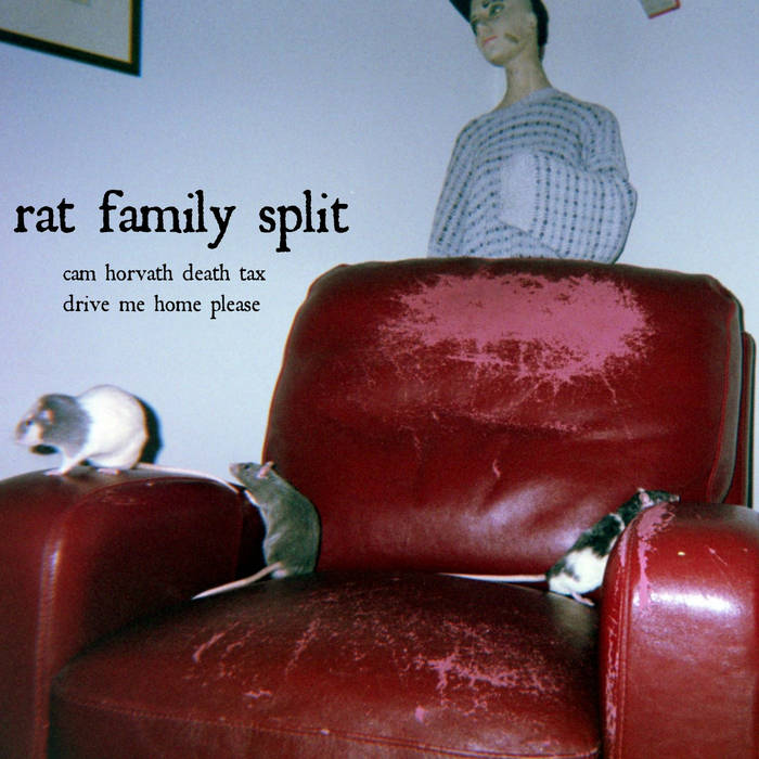 Rat Family Split cover art