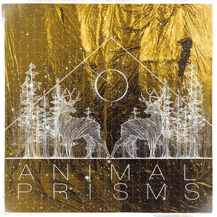 Animal Prisms cover art
