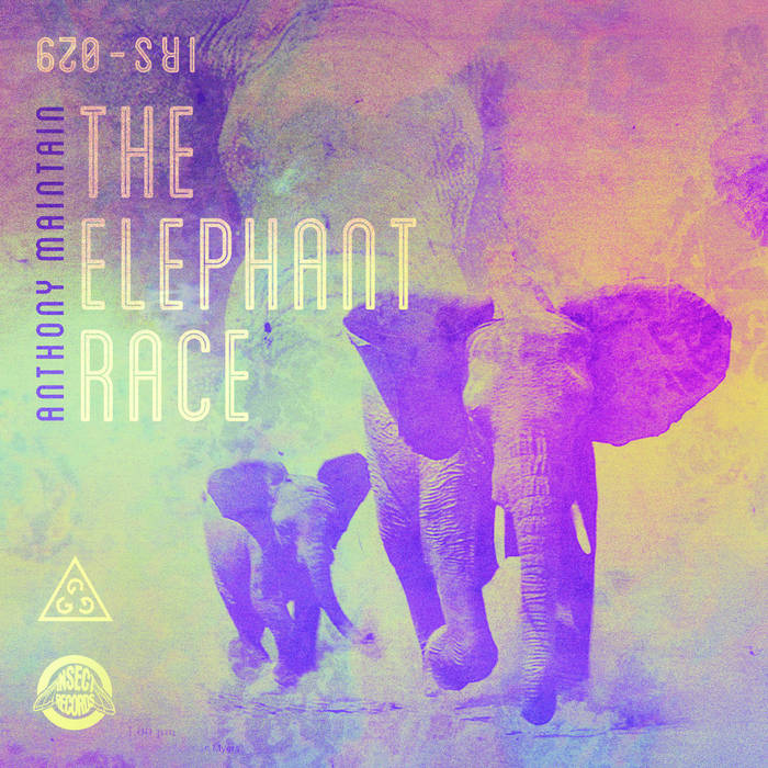The Elephant Race cover art