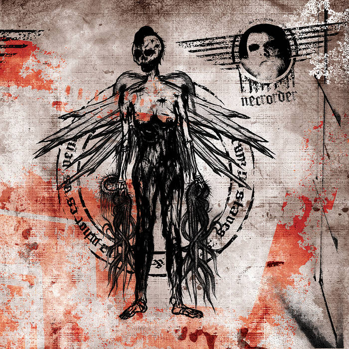 Slaves & Whores cover art