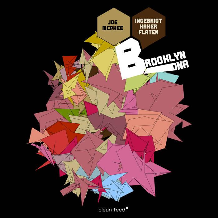 Brooklyn DNA cover art