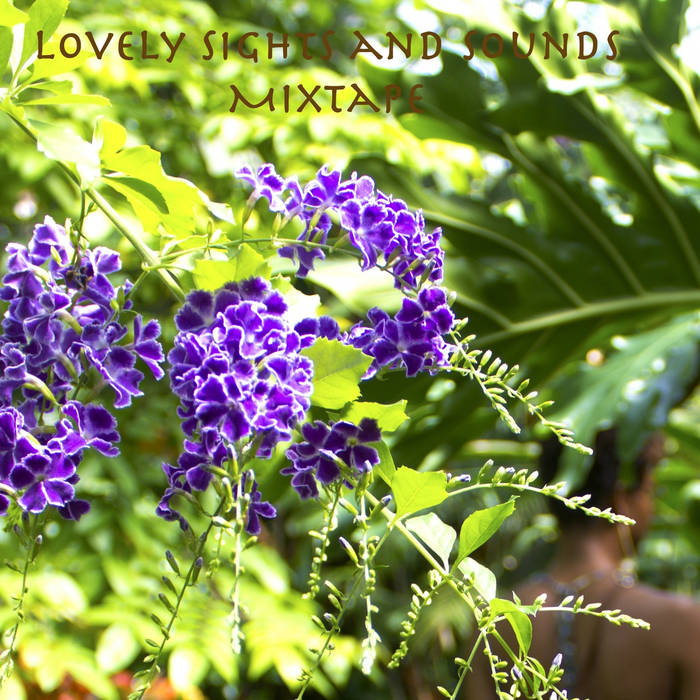 Lovely Sights and Sounds Mixtape cover art