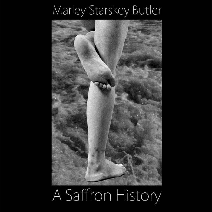 A Saffron History cover art