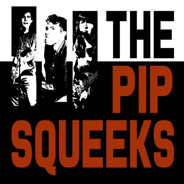 The Pip Squeeks cover art
