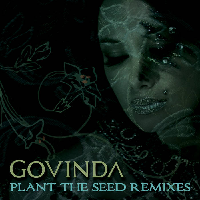 Plant The Seed Remixes cover art