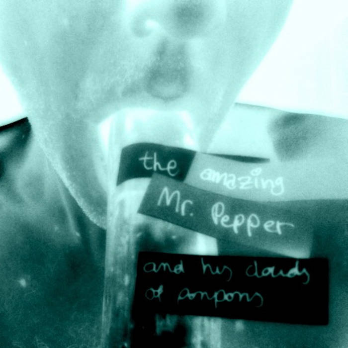 The Amazing Mr Pepper and his clouds of ponpons cover art