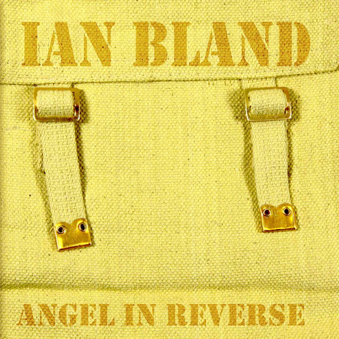 Angel In Reverse cover art
