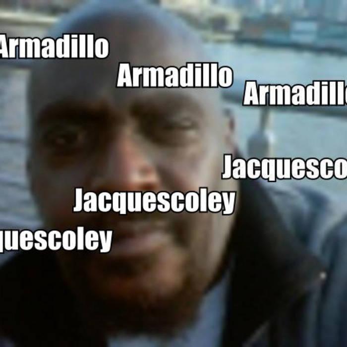 Armadillo cover art