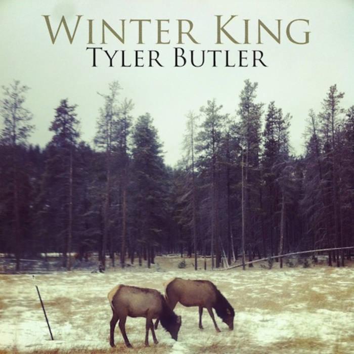 Winter King cover art