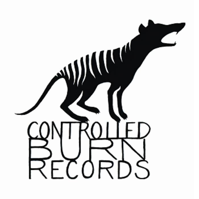 Controlled Burn Sampler cover art