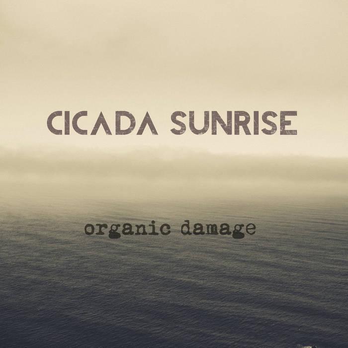 Organic Damage cover art