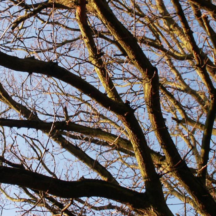 Recall Autumn Skies EP cover art