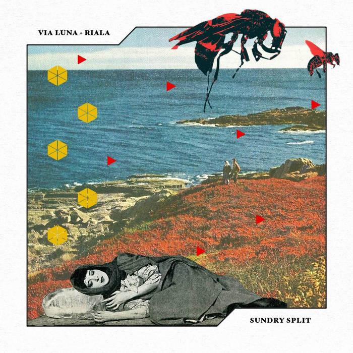 Sundry Split cover art