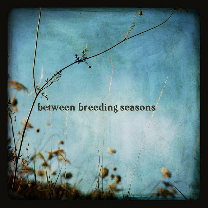 between breeding seasons (2012) cover art