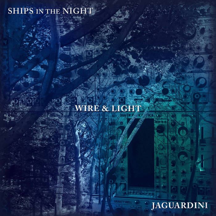 Wire & Light cover art