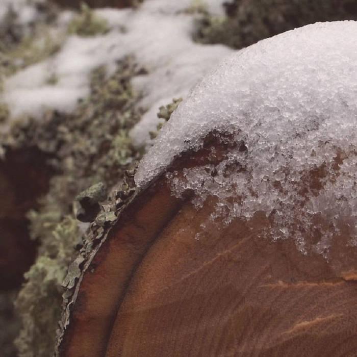 invierno cover art
