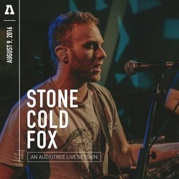 Stone Cold Fox - Audiotree Live main photo