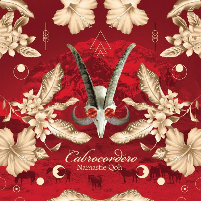 Namastie Qoh cover art
