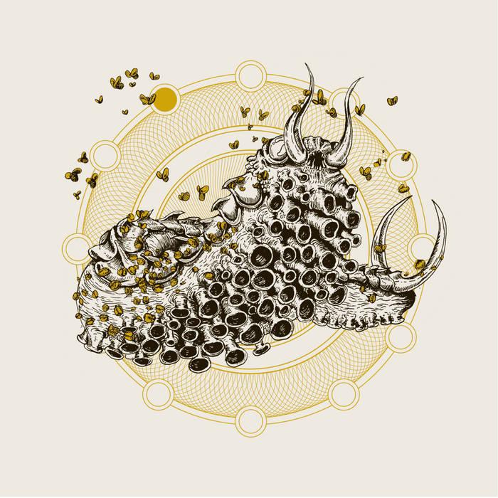 """Dead Elephant / Rabbits - Split 7"""" cover art"""
