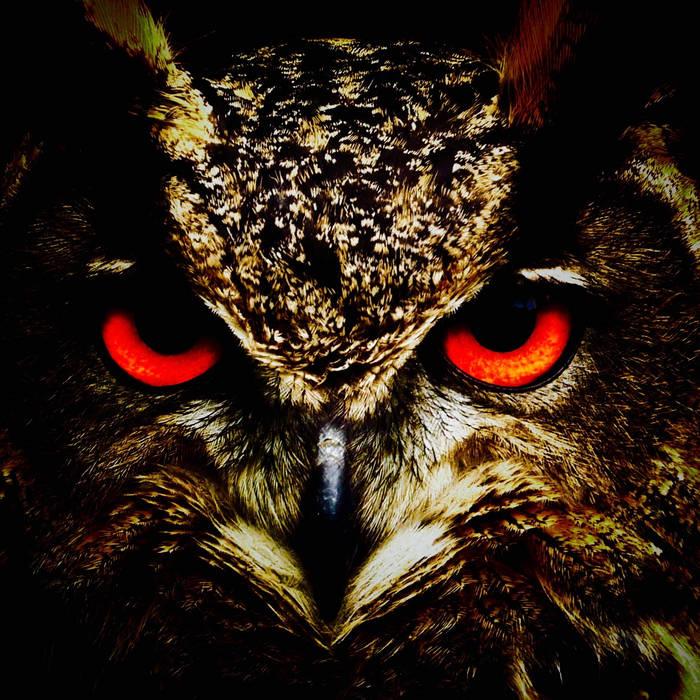Shamanic Owls cover art