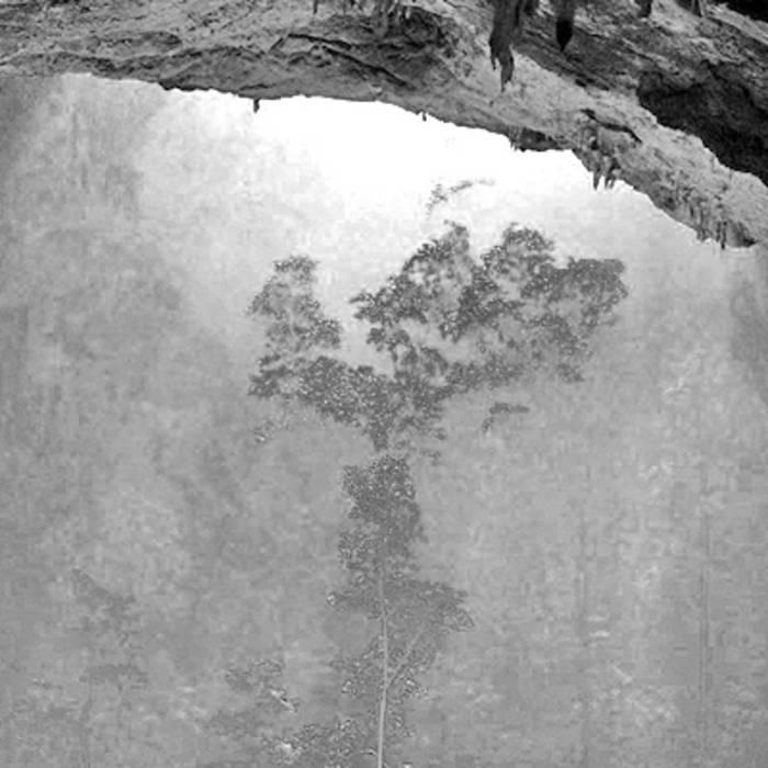 Mavis Wald cover art