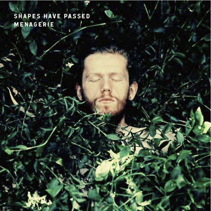 Shapes Have Passed cover art