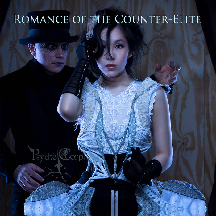 Romance of the Counter-Elite cover art