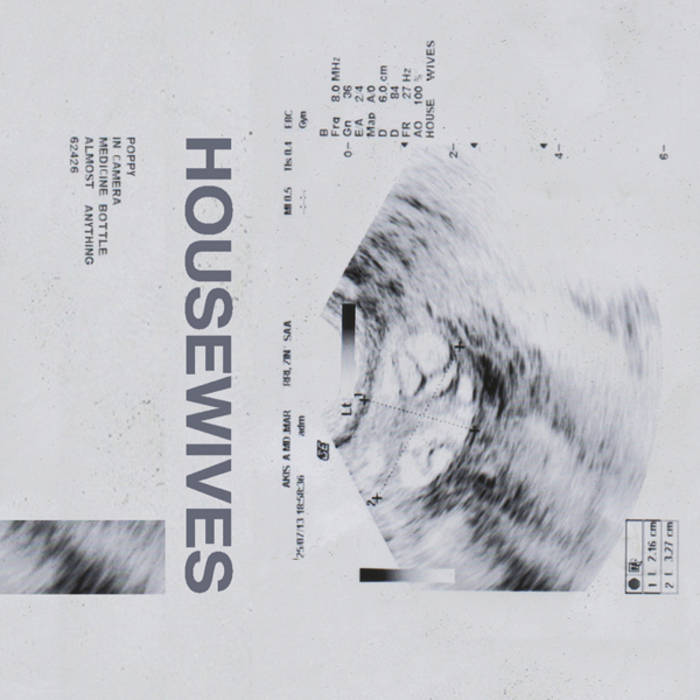 Housewives cover art