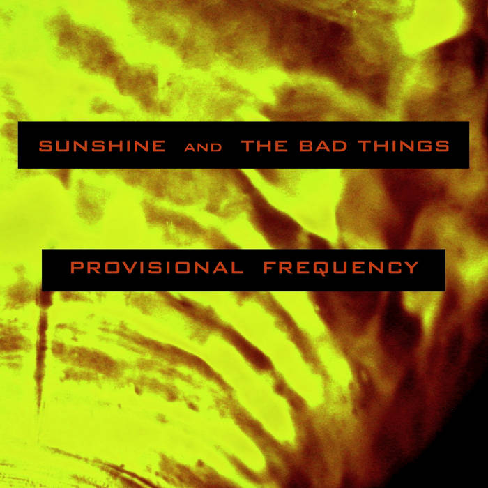 Provisional Frequency cover art