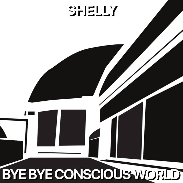 Bye Bye Conscious World cover art